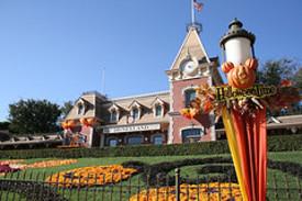 Disneyland_halloweentime