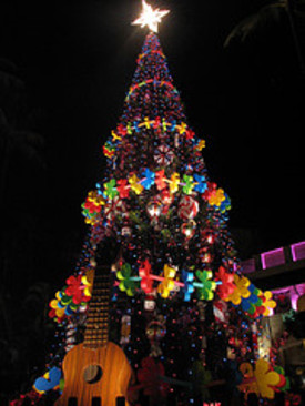 Hawaii_christmas_tree_2